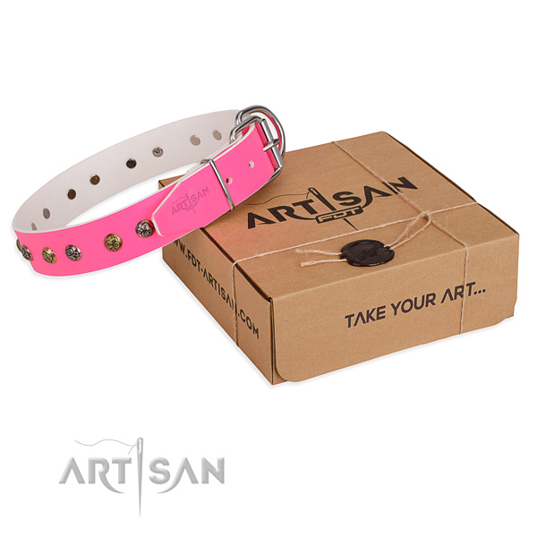 Daily use dog collar with Fashionable corrosion resistant adornments