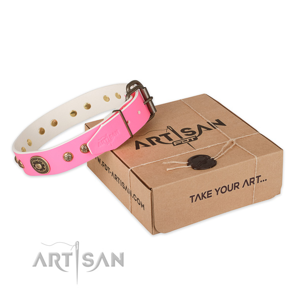 Rust resistant buckle on leather dog collar for daily walking