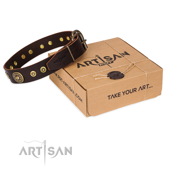 Full grain leather dog collar made of gentle to touch material with reliable traditional buckle