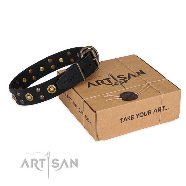 Durable D-ring on genuine leather collar for your beautiful four-legged friend