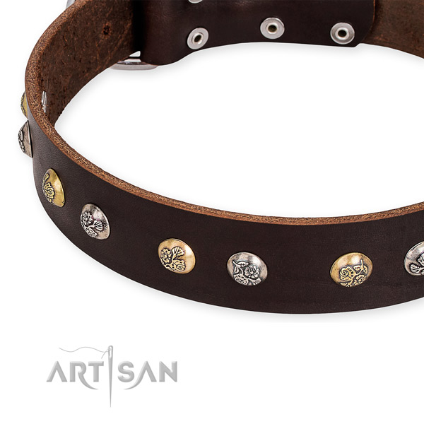Full grain natural leather dog collar with significant corrosion proof embellishments
