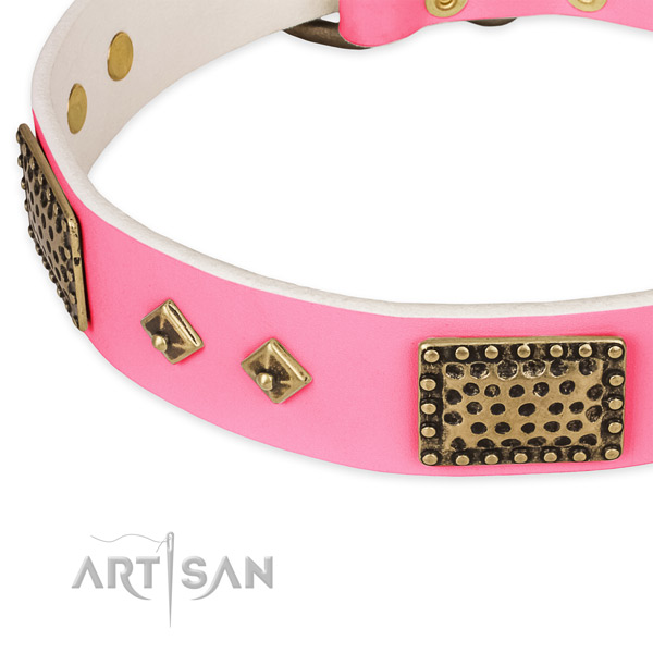 Full grain leather dog collar with embellishments for everyday walking