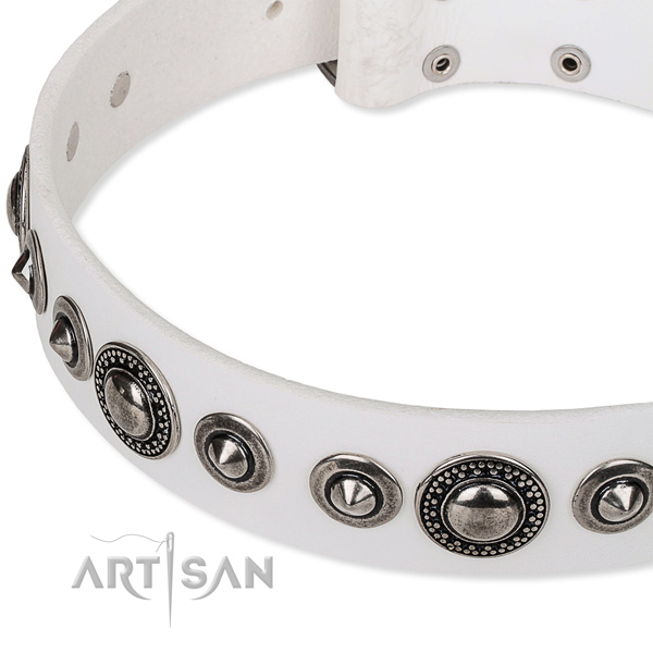 Fancy walking embellished dog collar of best quality full grain genuine leather