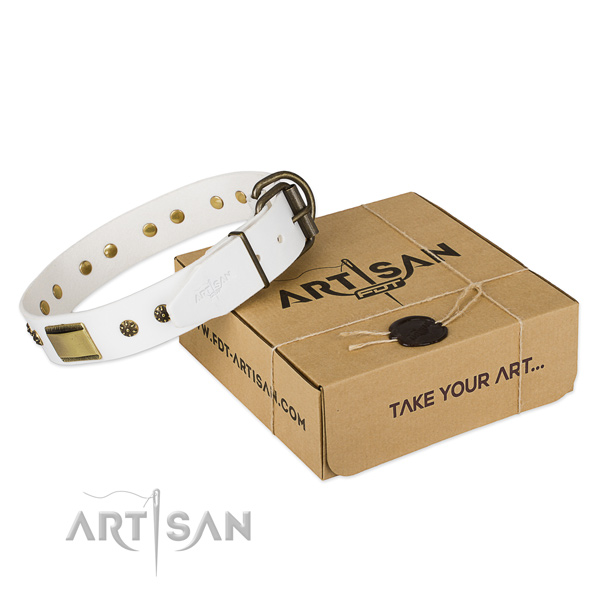 Awesome full grain genuine leather collar for your beautiful doggie