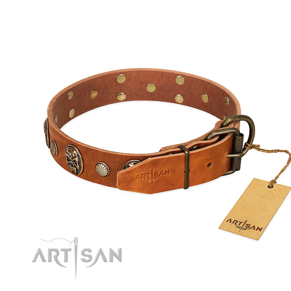 Rust resistant buckle on full grain leather collar for walking your canine