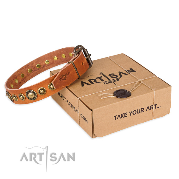 Durable leather dog collar created for daily use