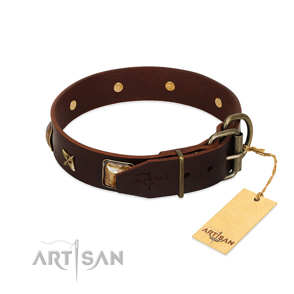 Full grain natural leather dog collar with durable buckle and studs