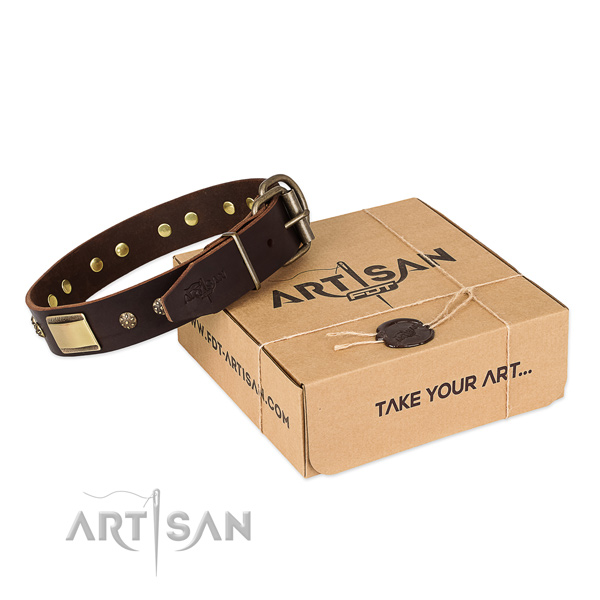 Handcrafted leather collar for your attractive four-legged friend