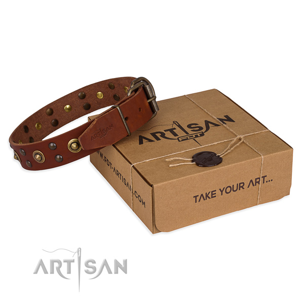 Corrosion proof hardware on full grain genuine leather collar for your lovely dog