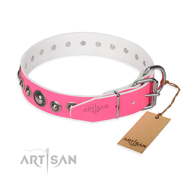 Full grain natural leather dog collar made of quality material with rust resistant studs