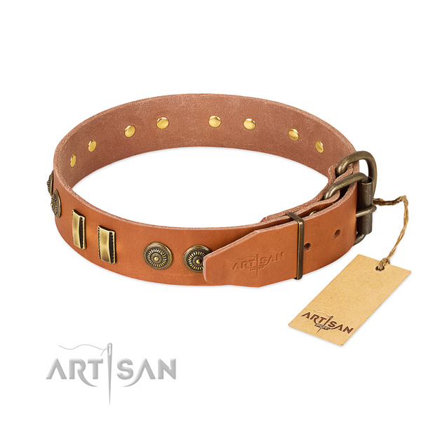 Rust resistant decorations on leather dog collar for your four-legged friend