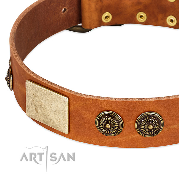 Unusual dog collar handmade for your beautiful canine