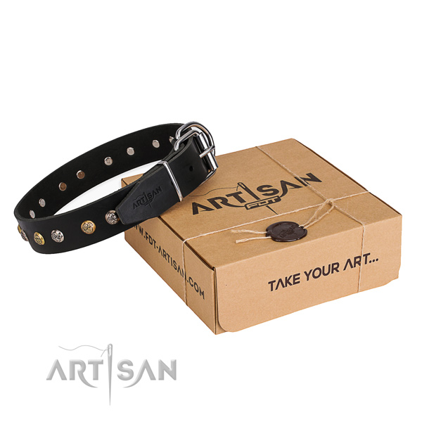 Reliable genuine leather dog collar created for daily use