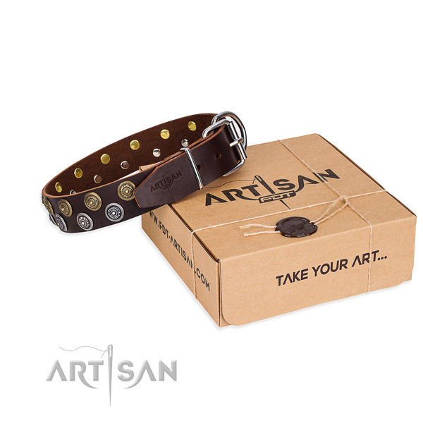 Daily walking dog collar of top notch genuine leather with embellishments