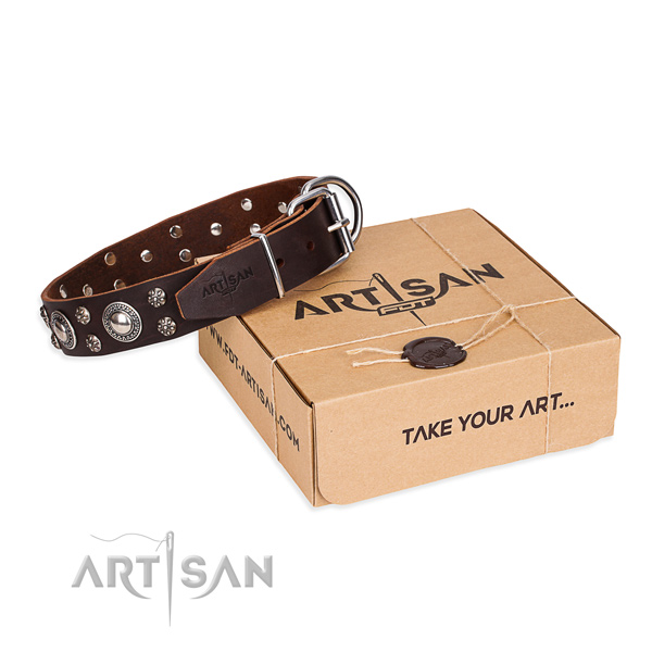 Everyday use dog collar of strong full grain natural leather with adornments