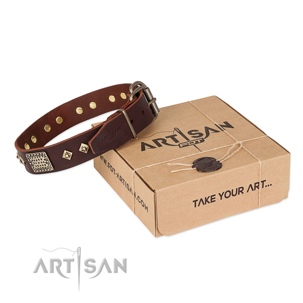 Stunning leather collar for your impressive doggie