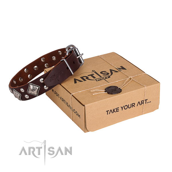 Daily use dog collar with Incredible rust-proof embellishments