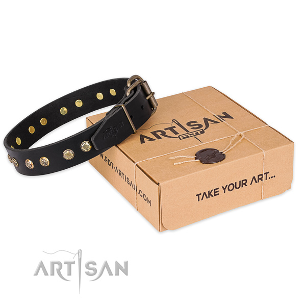 Corrosion proof fittings on full grain genuine leather collar for your stylish dog