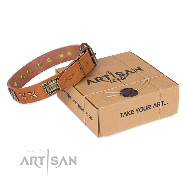 Reliable fittings on full grain natural leather collar for your attractive pet