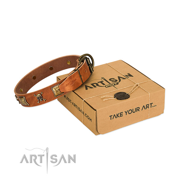 Top notch natural leather dog collar with corrosion proof embellishments