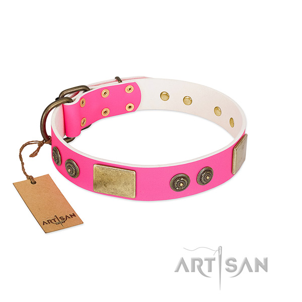 Unusual genuine leather dog collar for comfy wearing