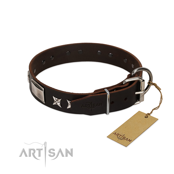 Incredible collar of genuine leather for your impressive canine