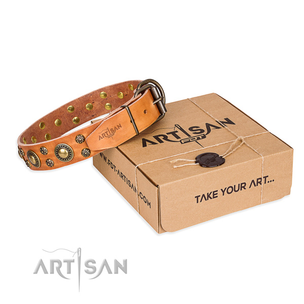 Easy wearing dog collar of reliable full grain natural leather with decorations