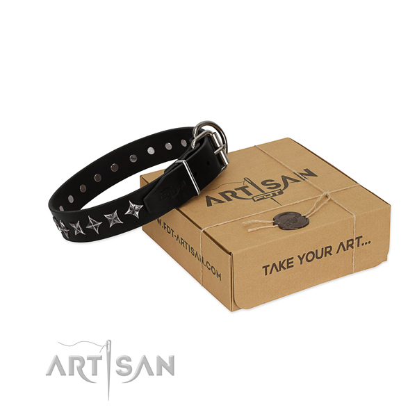 Everyday use dog collar of strong genuine leather with studs