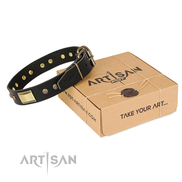 Designer natural leather collar for your impressive canine