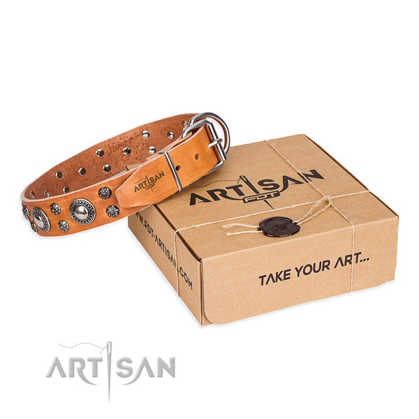 Daily use dog collar of top notch full grain natural leather with adornments