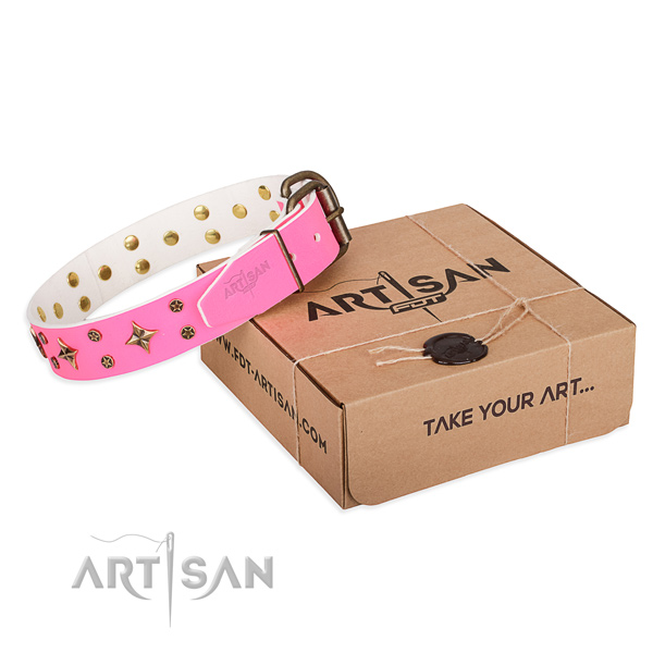 Everyday walking dog collar of durable full grain leather with decorations
