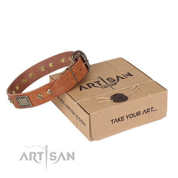 Top notch natural leather collar for your handsome four-legged friend