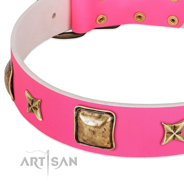 Leather dog collar with impressive adornments