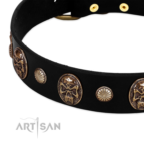 Natural leather dog collar with stunning adornments