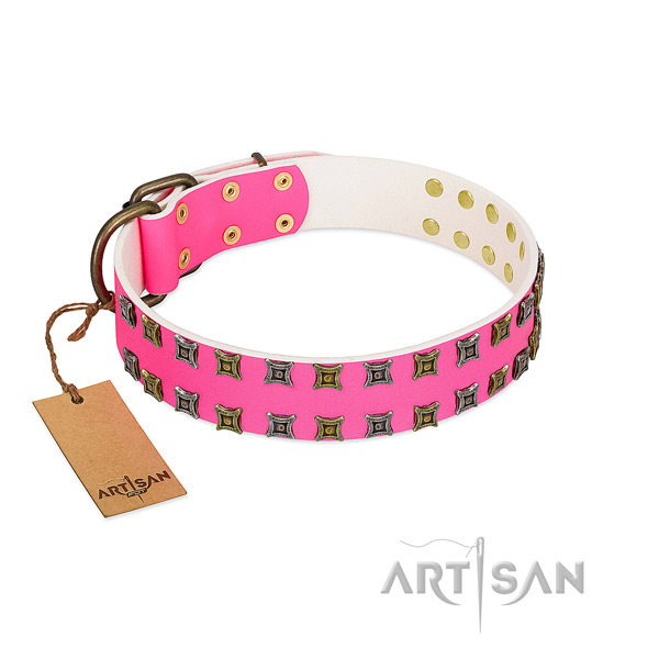 Full grain genuine leather collar with awesome embellishments for your doggie