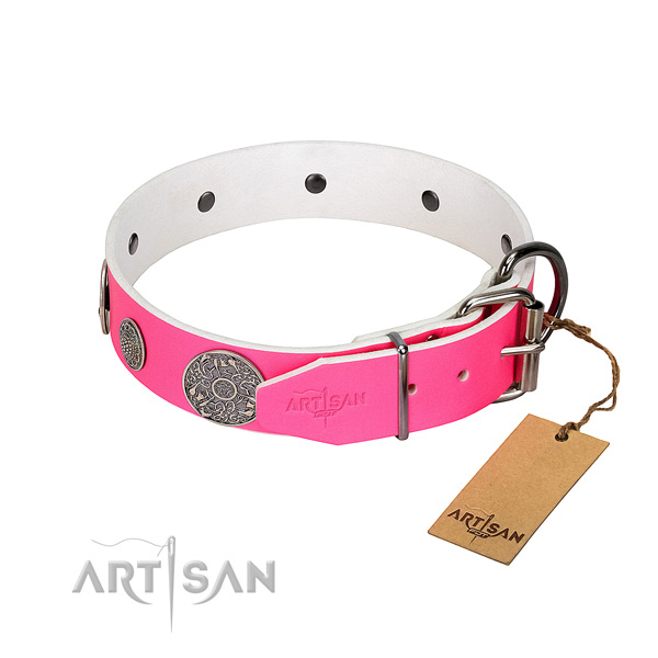 Trendy genuine leather collar for your handsome pet