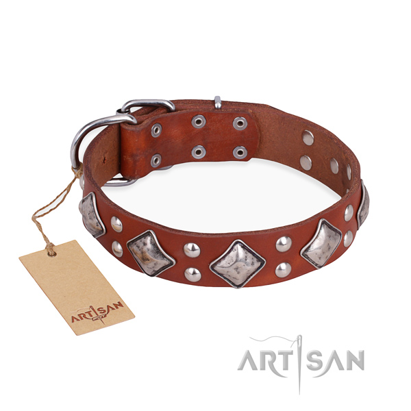 Easy wearing comfortable dog collar with rust resistant traditional buckle