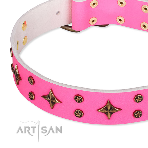 Stylish walking studded dog collar of strong full grain genuine leather