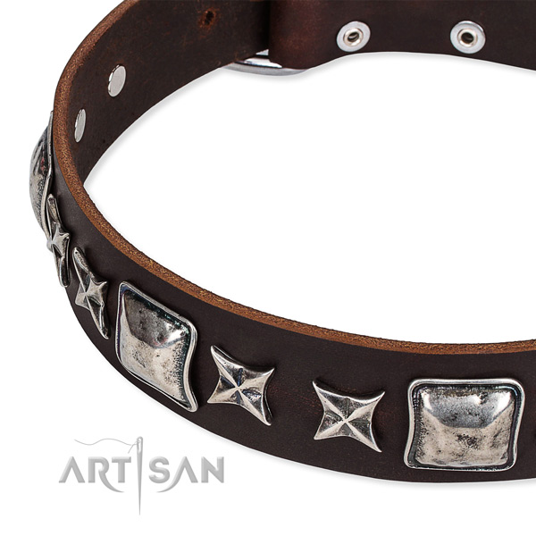 Daily walking studded dog collar of reliable full grain genuine leather