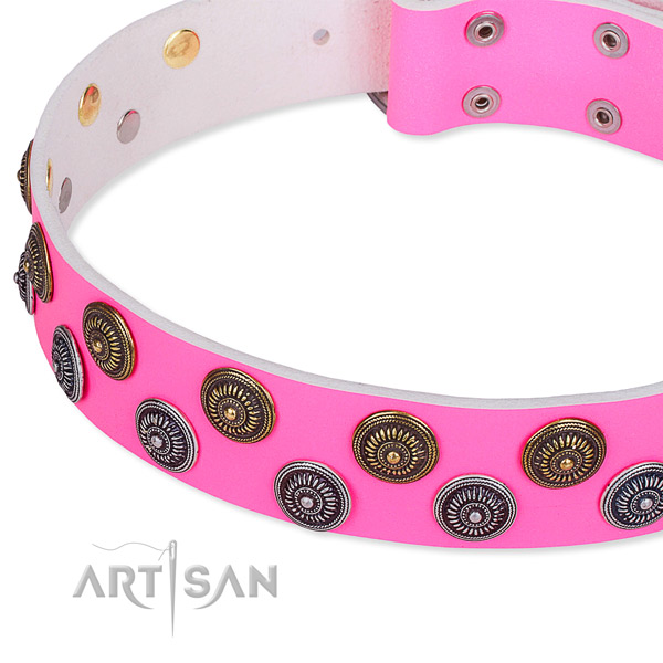 Comfortable wearing decorated dog collar of reliable full grain natural leather