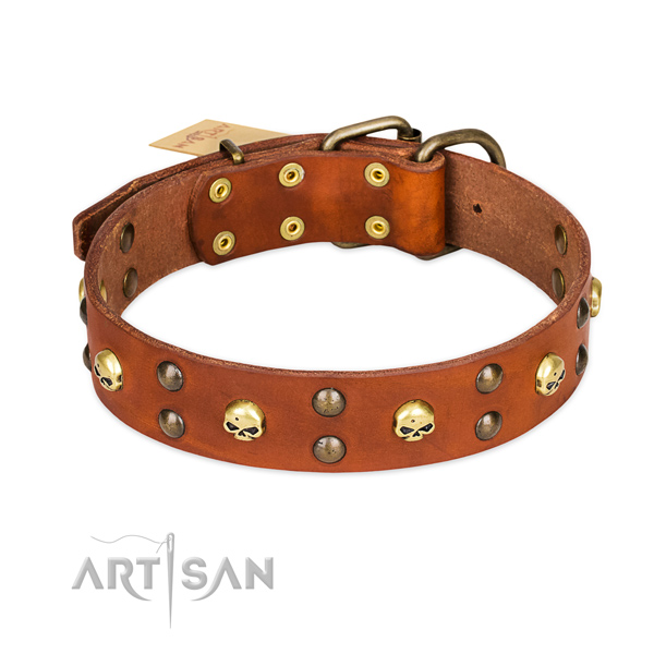 Easy wearing dog collar of top notch natural leather with adornments