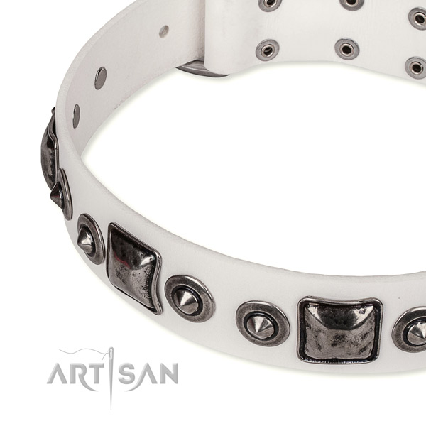 Durable genuine leather dog collar handcrafted for your impressive four-legged friend