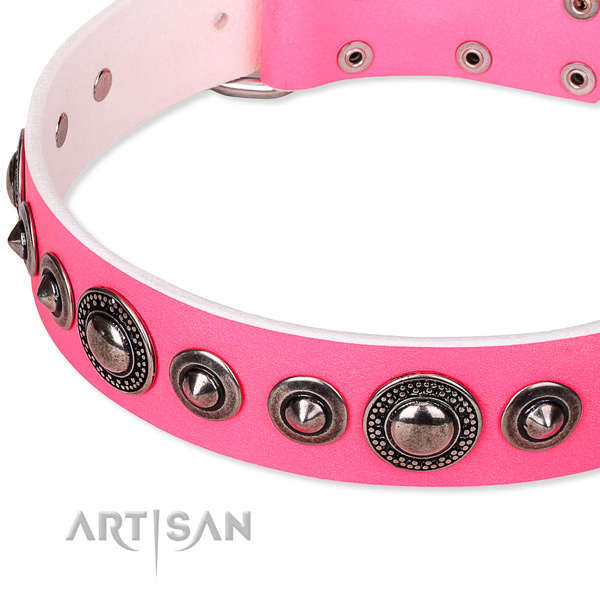 Stylish walking embellished dog collar of quality full grain leather