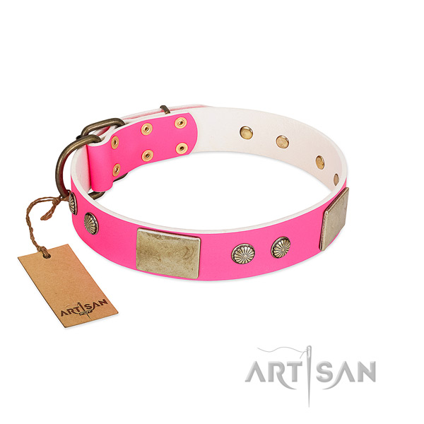 Easy to adjust full grain leather dog collar for walking your canine