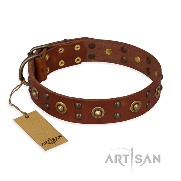 Perfect fit genuine leather dog collar with rust resistant D-ring
