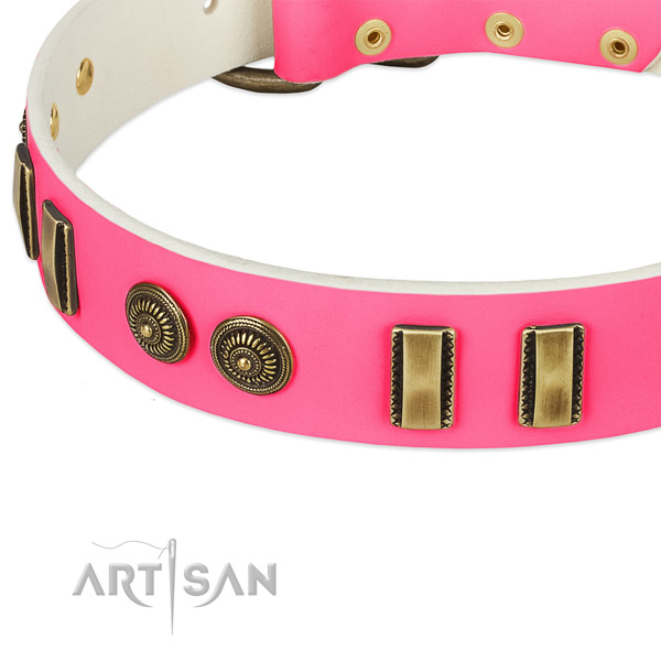 Corrosion proof buckle on natural leather dog collar for your four-legged friend