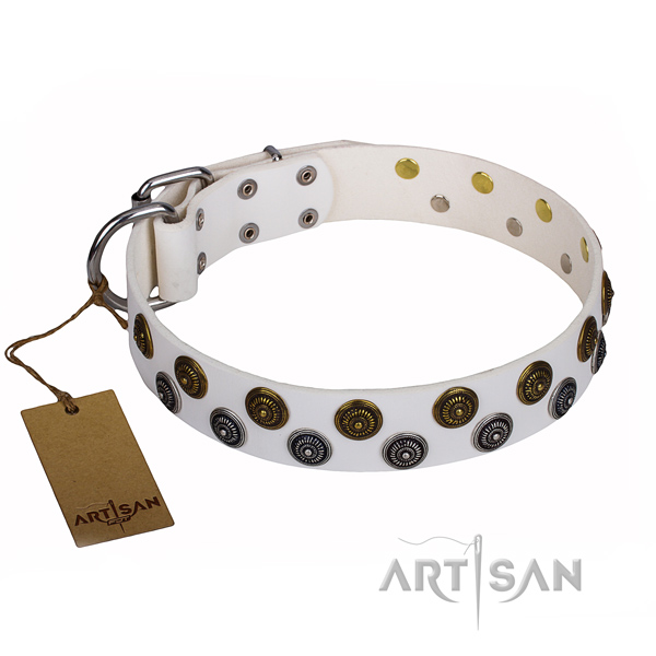 Comfortable wearing dog collar of top notch genuine leather with adornments