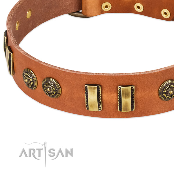Corrosion resistant decorations on full grain natural leather dog collar for your dog