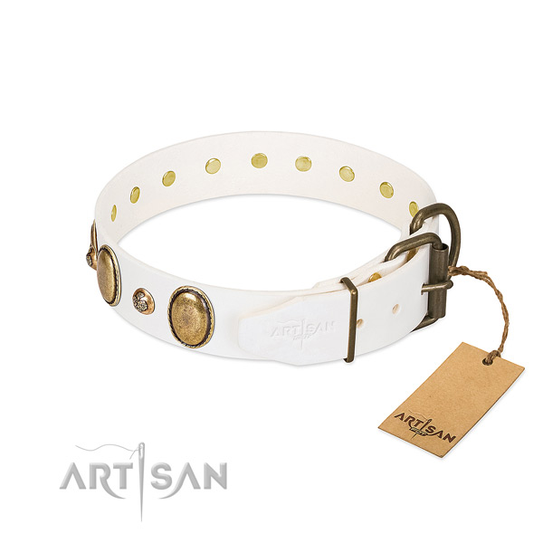 Everyday use leather dog collar