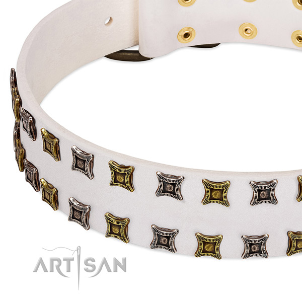 Full grain genuine leather dog collar with embellishments for your beautiful dog